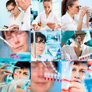 Collage of people clinicians studying microbiology genetics in laboratory Stock Photos