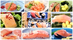 Stock Video Footage of salmon recipes collage