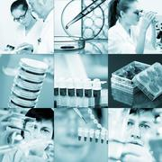 Work in the microbiology laboratory, medical research set Kuvituskuvat