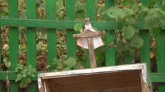 Medium Close Up Shot of well and cup at Gorodetske in Zhytomyr province, Ukraine Stock Footage