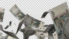 Falling Russian money Stock Footage