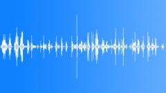 Bark Scrape - sliding grind 2 Sound Effect