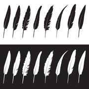 vector group of feather on white background and black background - stock illustration