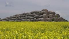 old straw bales stack on yellow  rapeseed field - stock footage