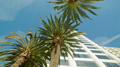 Office building and palm trees Ocean Avenue sunny day Santa Monica LA California Stock Footage