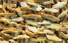 boletus mushrooms sliced and stacked for drying - stock photo