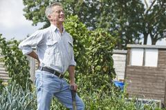 Senior man suffering from back pain whilst gardening Stock Photos