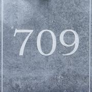 House number seven hundred and nine engraved in natural stone -  709 Stock Photos