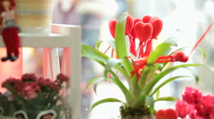 Shop window display with flowers and gifts for Valentine's Day Stock Footage
