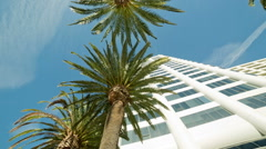 White Office Building Shiny Glass Windows Palm Trees Rotating Panning Shot Stock Footage