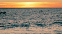 Boat on Ocean at Sunset - Motorboat on Water - Sea Waves Crashing on Shore Stock Footage
