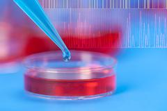 petri dishes and micropipette, pathogens test - stock photo