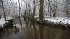 Stream in the winter forest Stock Footage