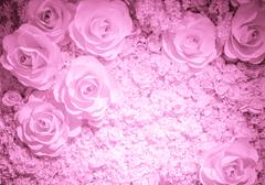 Artificial rose flower background Stock Photos