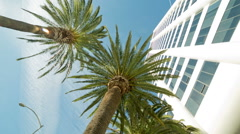 Palm Trees and Corporate White Office Building Glass Windows Panning Shot Stock Footage