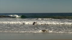 kids playing with waves in the ocean - stock footage
