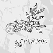 hand drawn cinnamon sticks with leaves, design elements. culinary spices - stock illustration