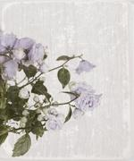 old card with campanula flowers - stock photo