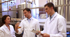 Team of brewers checking their product Stock Footage