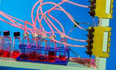 Microfluidic devices for stem cell cultivation and proliferation Stock Photos