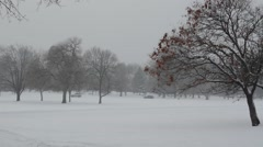 A city park in a snowstorm Stock Footage