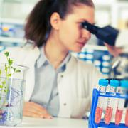Woman in the laboratory of plant genetics Stock Photos