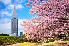 Tokyo park in the spring Stock Photos