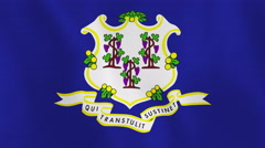Loopable: Connecticut Flag Stock Footage