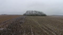 Flying over the field and trees in the frost Stock Footage