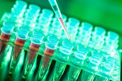 Laboratory research of cancer diseases,  rack with rna samples Stock Photos