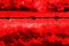 barbed wire against a red background - stock illustration
