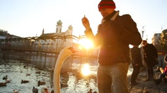 Man feeding a Goose in Lucern, Switzerland. Stock Footage