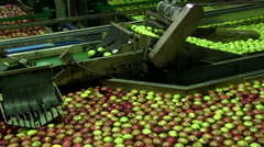 Industrial apple production in a factory Stock Footage