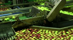 Food production Stock Footage