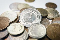 Polish zloty coins, close up Stock Photos