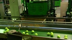 Production of green apples In food factory Stock Footage