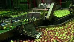 Food Factory, Industryindustrial apple production Stock Footage