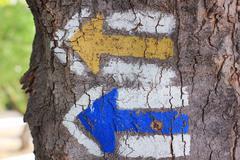 Two arrows painted on tree Kuvituskuvat