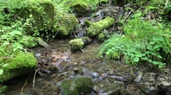 Beautiful brook with environmentally safe water Stock Footage