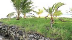 Peer on the Island of Yap - stock footage