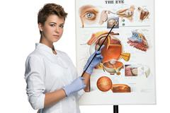 Optician or oculist woman tells about structure of the eye - stock photo
