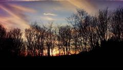 Sunset timelapse behind winter trees Stock Footage