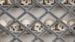 Skulls in row uhd 4k Stock Footage
