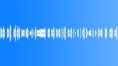 Dog Toy Foley Sound Effect