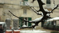 Particular of branch full of snow in Matera Italy Stock Footage