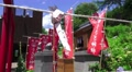 Prayer Scroll Tied To Rope In Front Of Flags At Shinto Shrine HD HD Footage
