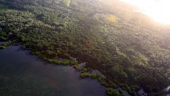 Jungle Panorama on the Micronesian Island of Yap Stock Footage