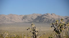 Mohave National Park Stock Footage