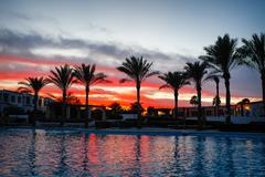 sunset on the background of palm trees and swimming pools - stock photo