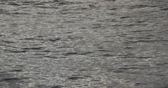 Sea water moody close up Stock Footage
